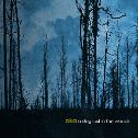 Alka : A Dog Lost In The Woods [CD-R]