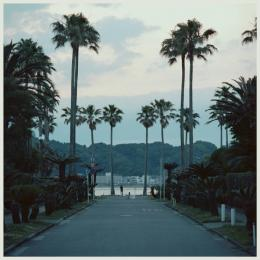 submerse : Are You Anywhere [CD]