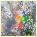 Four Tet : Sixteen Oceans [CD]