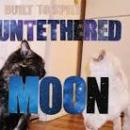 Built To Spill : Untethered Moon [LP (+CD)]
