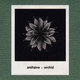 Anthene : Orchid [CD-R]