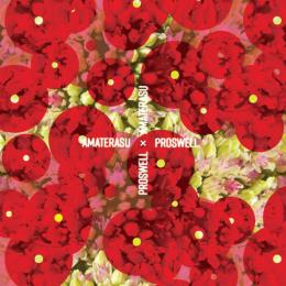 Proswell : Amaterasu [CD]