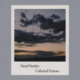David Newlyn : Collected Fictions [CD-R]