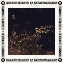 Sarah Davachi : Pale Bloom [CD]