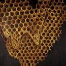 Telefon Tel Aviv : Map Of What Is Effortless [CD]