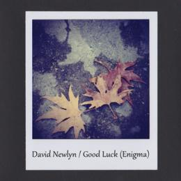 David Newlyn : Good Luck (Enigma) [CD-R]