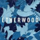 Etherwood : Blue Leaves [CD]