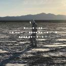 Spiritualized : And Nothing Hurt [LP]