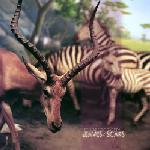 Beware Of Safety : Leaves/Scars [CD]