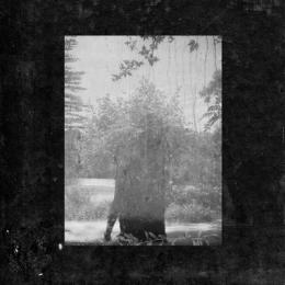 Grouper : Ruins [CD]