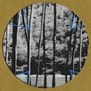 "Four Tet : Lion / Peace For Earth [12""]"