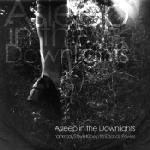 Hammock / Steve Kilbey / timEbandit Powles : Asleep In The Downlights [CDEP]