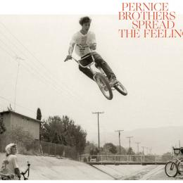 Pernice Brothers : Spread The Feeling [CD]