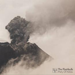 Flashbulb : Piety Of Ashes [CD]