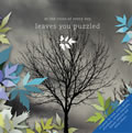 At The Close Of Every Day : Leaves You Puzzled [CD]